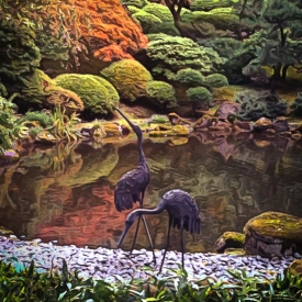 ip_cranes_in_the_garden